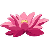 Cartoon lotus flower. Colorful floral print design. Pink lotus flower water lily, isolated on white background. Hand drawn vector illustration Royalty Free Stock Images