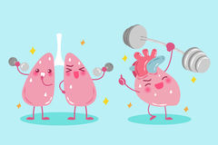 Cartoon lung and heart Stock Image