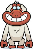 Cartoon Macaque Grin Royalty Free Stock Images