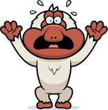 Cartoon Macaque Panicking. A cartoon illustration of a Japanese macaque panicking Stock Photos