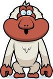 Cartoon Macaque Surprised Royalty Free Stock Photo