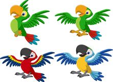 Free Cartoon Macaw Collection Set Royalty Free Stock Photo - 123696125