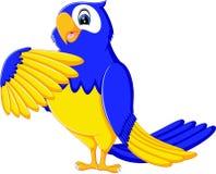 Cartoon macaw Royalty Free Stock Photos