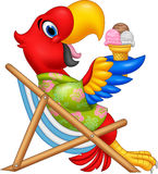 Cartoon macaw sitting on beach chair and eating an ice cream vector illustration