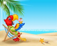 Cartoon macaw sitting on beach chair and eating an ice cream royalty free illustration