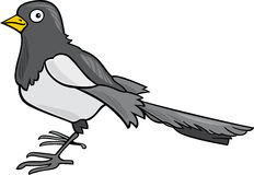 Cartoon Magpie Stock Photos