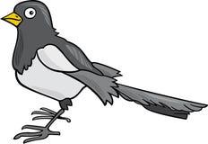 Cartoon Magpie Stock Photos