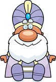 Cartoon Maharaja Sitting Royalty Free Stock Photography
