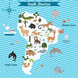 Cartoon map of South America continent with different animals. Colorful cartoon illustration for children and kids. South America mammals and sea life. Cartoon stock illustration