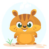 Cartoon marmot icon. Vector illustration of groundhog or chipmunk isolated. Royalty Free Stock Photography