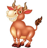 Cartoon mascot bull with large horns Royalty Free Stock Photography