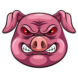 Mascot Head of an pig stock illustration
