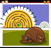 Cartoon maze or labyrinth game. Cartoon Illustration of Education Maze or Labyrinth Game for Preschool Children with Funny Sleeping Bear Animal Stock Images