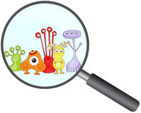 Cartoon microbes peek out from a magnifying lens. Vector illustration royalty free illustration