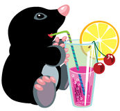 Cartoon mole drinking cocktail Stock Images
