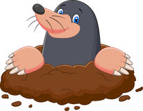Cartoon mole gesturing Royalty Free Stock Photography
