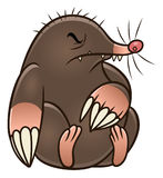 Cartoon mole pest Royalty Free Stock Photos