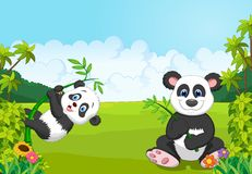 Cartoon mom and baby panda climbing bamboo tree Royalty Free Stock Photography