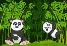 Cartoon mom and baby panda in the climbing bamboo tree Royalty Free Stock Images