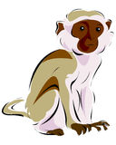 Cartoon monkey Royalty Free Stock Image