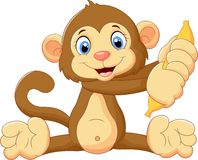 Cartoon monkey holding banana fruit Royalty Free Stock Photo
