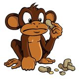 Cartoon monkey with peanuts. Cute cartoon monkey looking bewildered at some peanuts Royalty Free Stock Image