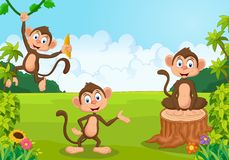 Cartoon monkey playing in the forest Stock Images