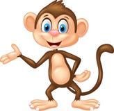 Cartoon Monkey Presenting Stock Images