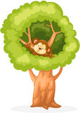 Cartoon monkey on the tree Royalty Free Stock Photo