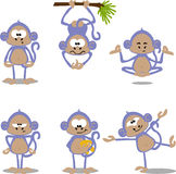 Cartoon monkeys Stock Photos