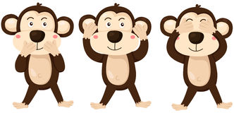 Cartoon monkeys covering eyes, ears and mouth. Illustration of isolated cartoon monkeys covering eyes, ears and mouth Royalty Free Stock Photography