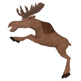 Cartoon moose Royalty Free Stock Photography