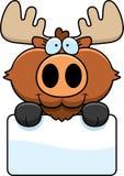 Cartoon Moose Sign Stock Image