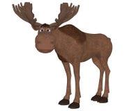 Cartoon moose standing Royalty Free Stock Image