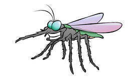 Cartoon Mosquito Stock Image