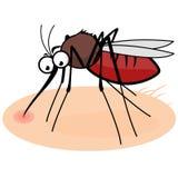 Cartoon mosquito sucking blood Stock Photo
