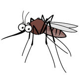 Cartoon mosquito. Vector illustration of a cartoon mosquito on white background vector illustration