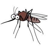 Cartoon mosquito Stock Photos