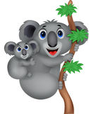 Cartoon Mother and baby koala Stock Images