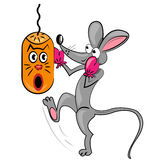 Cartoon mouse boxing.  isolated character Royalty Free Stock Photography