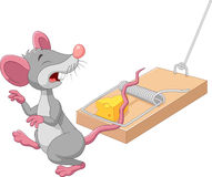 Cartoon mouse in a mousetrap isolated on white background Stock Photos