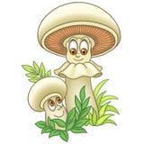 Cartoon Mushroom Champignon Shiitake boletus Royalty Free Stock Image