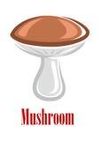 Cartoon mushroom Royalty Free Stock Image