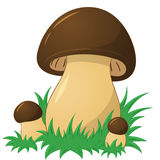 Cartoon mushroom Stock Photos