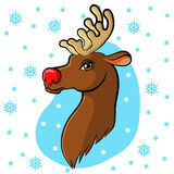Cartoon muzzle reindeer on snowflakes background Royalty Free Stock Image