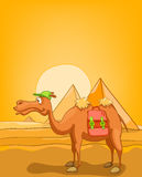 Cartoon Nature Landscape Pyramids of Egypt Stock Image