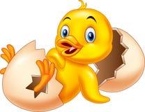 Cartoon new born duckling. Illustration of Cartoon new born duckling stock illustration