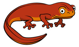 Cartoon Newt. An illustration of a happy cute cartoon newt Stock Photos