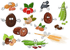 Cartoon nuts, beans, seeds and wheat Stock Photography
