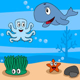 Cartoon Ocean Life [2]. Cartoon ocean life (second of four perfectly attachable illustrations): an octopus, a whale, a seaweed or alga and a starfish in a funny vector illustration